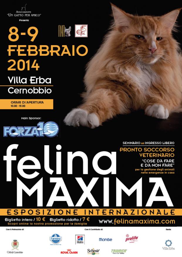 felinamaxima-cernobbio-como-2014