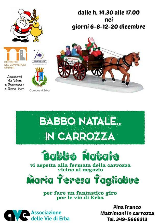 Erba-Carrozza-babbo-natale